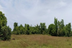 7,771 m2 agricultural lot adjacent to Maasin airport.