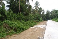 22,880sqm Titled Agricultural Land in Alfonso , Cavite for sale